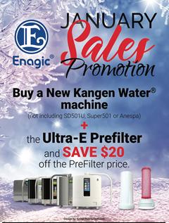 January Sales Promo
